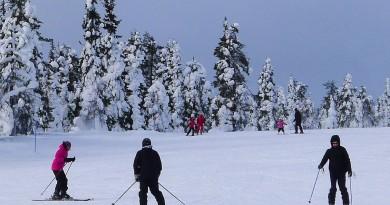 Alpy czy narty u południowych sąsiadów?